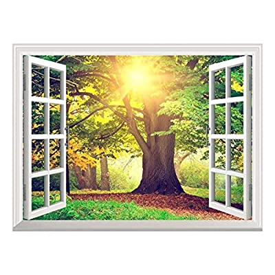 Removable Wall Sticker Wall Mural Sunrays Through Beautiful Tree Creative Window View Wall Decor, Premium Product, Handsome Portrait
