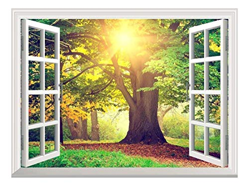 Removable Wall Sticker Wall Mural Sunrays Through Beautiful Tree Creative Window View Wall Decor