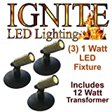Anjon Ignite LED Pond and Landscape lighting AB1KLED 1 Watt, 3 Light LED Light Kit with 12 Watt Transformer