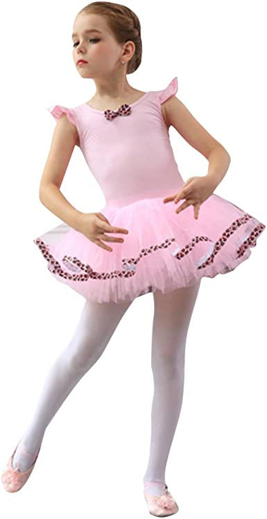 Girl Kid Ballet Tutu Dress Ballerina Leotard Skirt Dancewear Fairy Swan Costumes