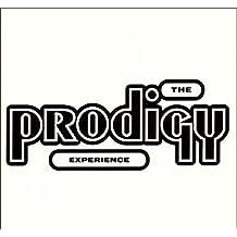 Experience (Vinyl)
