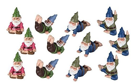 Yoga Activity Garden Gnomes Collectible Figurines, Set of Twelve