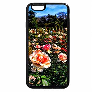 iPhone 6S Plus Case, iPhone 6 Plus Case, ROSE GARDEN HDR