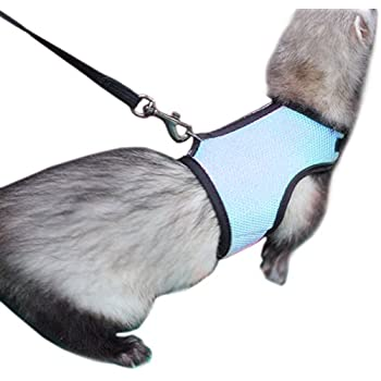 Amazon selfon hamster rabbit dog mesh harness leash ferret alfie pet by petoga couture jaylin harness and leash set for small animals like guinea publicscrutiny Gallery