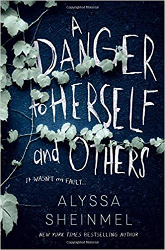 Amazon.com: A Danger to Herself and Others (9781492667247): Sheinmel,  Alyssa: Books