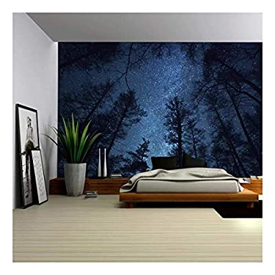 Wall26 - A Gazing View Up Into The Night Starry Sky Surrounded by Trees - Wall Mural, Removable Sticker, Home Decor - 66x96 inches