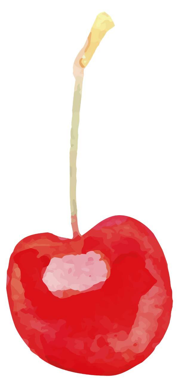 Wandtattoo Küche Kirsche in rot Wandsticker Obst Dekoration Küchenwand