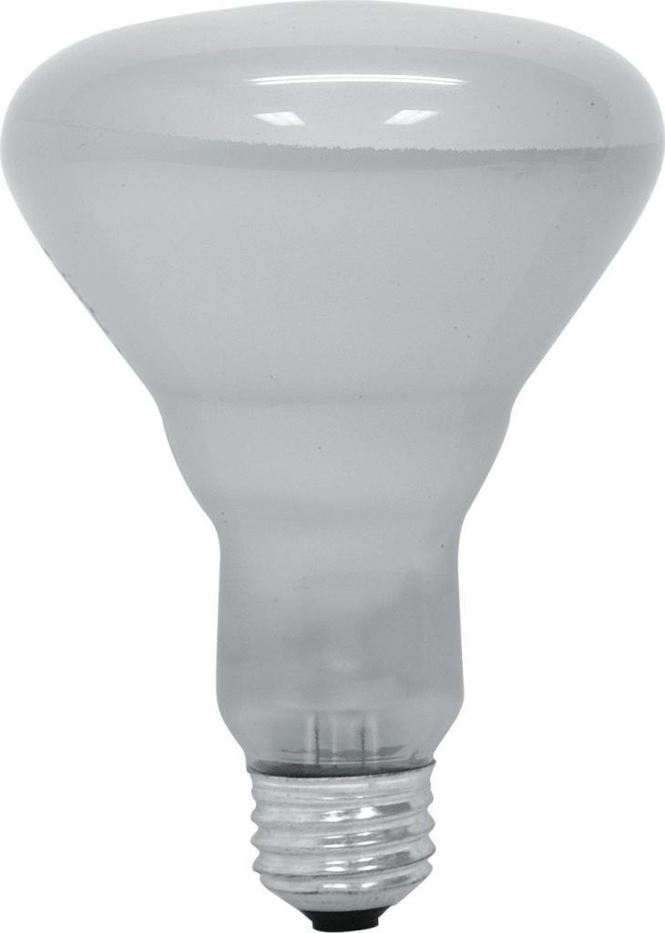 6 Pack GE Lighting 20332 65 Watt 700 Lumen R30 Spot Light Bulb Soft White