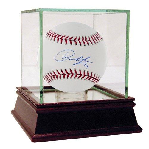 MLB Detroit Tigers Austin Jackson Autographed Baseball Steiner Sports JACKBAS000050