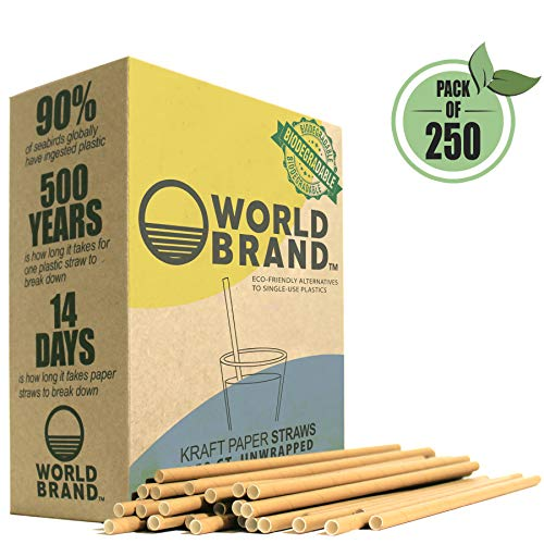 World Brand 250 Dye-Free Biodegradable PREMIUM Paper Straws, Made from -