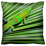 Handmade 22X22 Throw Pillow case Polyester Satin pillowcase Decorative Soft Pillow Covers Protector sofa Bed Couch IMAGE ID 24409084 Colorful gecko with blue eyes and webbed feet hides on the pleated