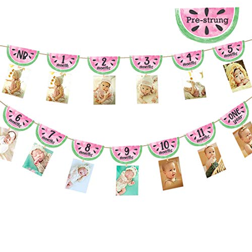 One in a Melon Photo Banner Watermelon 12 Month Photo 1st Birthday Party Supplies Decorations Summer Fruit Themed Baby Girl First Summer Decor -