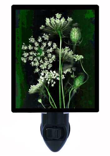 Lace Night Light (Floral / Flower Night Light - Organics Queen Anne's Lace - Wildflower)