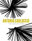 img - for Antonio Carluccio: The Collection book / textbook / text book