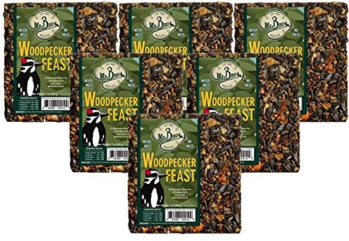 (6-Pack of Mr. Bird Woodpecker Feast Small Wild Bird Seed Cake 8 oz.)