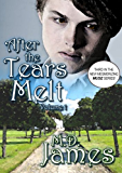 After the Tears Melt - Vol. 1 (Muse Book 3)