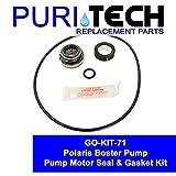 Puri Tech GO-KIT - Polaris Booster Pump
