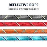 RUFFWEAR, Knot-a-Leash Dog Leash, Climbing Rope