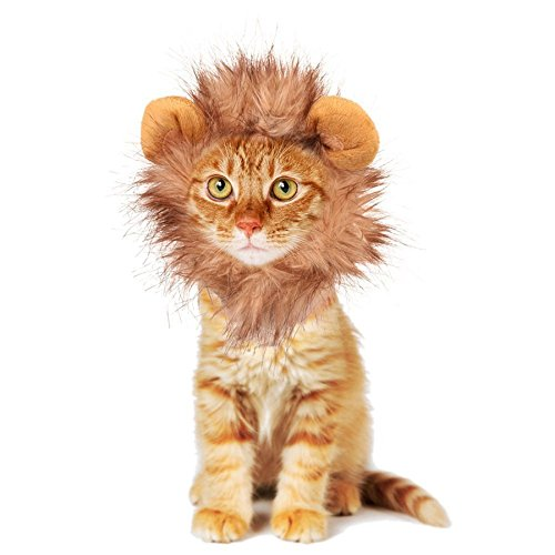 [Rocpet Pet Costume Lion Mane Wig for Dog Cat Halloween Dress up with Ears (lion)] (Lion Costume For Small Dogs)