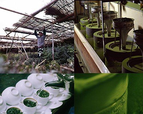 Seiun 150g tin, Premium Ceremonial Grade Uji Matcha Green Tea Powder from Yamamasa Koyamaen, Kyoto by Yamamasa Koyamaen (Image #5)