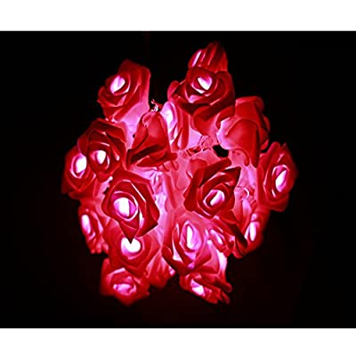 Eastlion 20 LED Romantic Battery Operated Rose Flower String Lights for Wedding,Garden,Christmas Decoration