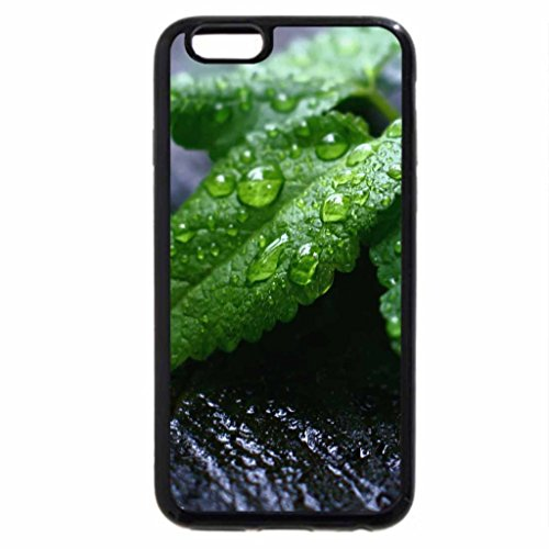 iPhone 6S / iPhone 6 Case (Black) Green reflection