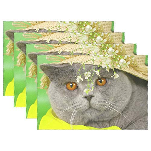 Promini Beauty Cat Flower Cap Placemats Vintage Flower Table Mats Non-Slip Washable Heat Resistant Place Mats for Kitchen Dining Decor Tray Mat Set of 4 (Prana Cap Vintage)
