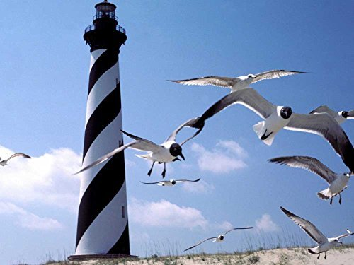 Cape Hatteras Lighthouse Pictures (North Carolina Cape Hatteras Lighthouse -Oil Painting On Canvas Modern Wall Art Pictures For Home Decoration Wooden Framed (20X16 Inch, Framed))