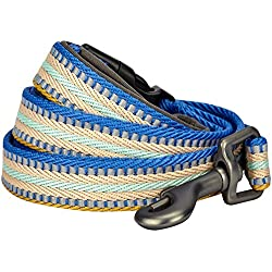 "Blueberry Pet 8 Colors 3M Reflective Multi-Colored Stripe Dog Leash with Soft & Comfortable Handle, 5 ft x 3/4"", Ginger & Blue, Medium, Leashes for Dogs"