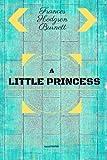 A Little Princess: By Frances Hodgson Burnett - Illustrated