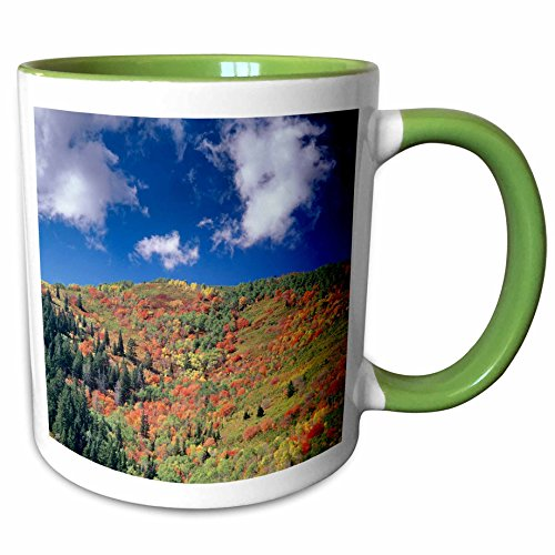 3dRose Danita Delimont - Autumn - Autumn, Kimball Junction, Park City, Utah, USA - US45 HGA0425 - Howie Garber - 11oz Two-Tone Green Mug - City Utah Park 11 7