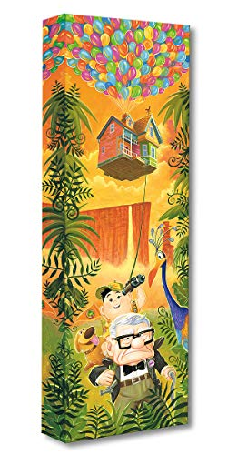 Disney Fine Art Journey to Paradise Falls by Tim Rogerson Treasures on Canvas Up 24 Inches x 8 Inches Reproduction Gallery Wrapped Canvas Wall -
