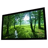 ELUNEVISION EV-F-120-1.2 Projection Screen, Black