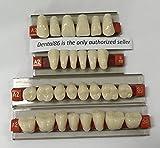 dental resin teeth - Dental Acrylic Resin Teeth Denture For Halloween Horror Prop by smiledt
