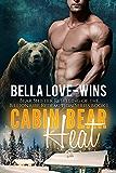 Cabin Bear Heat Book 1: A Paranormal Fantasy Bear Shifter Romance (A Bear Shifter Romance Retelling of the Billionaire Redemption Series)