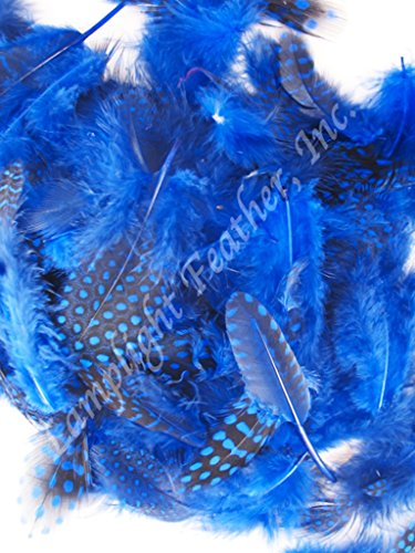 Long Purple Feather Earrings - Approx 300, Guinea Plumage Feathers, Many colors to choose from, spotted, per 1 ounce bag, by Lamplight Feather Inc (Blue)