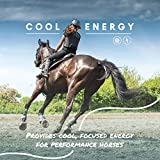 Manna Pro Cool Calories 100   Equine Dry Fat
