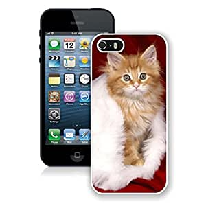 For Ipod Touch 5 Case Cover CaCustomized Travel Illustrations New Fashion PC Black Hard