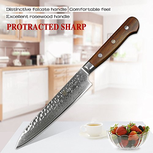 XINZUO Cutlery 6 inch Utility Knife Japanese VG-10 Damascus Steel Kitchen Knife Fruit Knife Peeling Razor Sharp Hammered Finish with Rosewood Handle - Yun Series by XINZUO (Image #1)