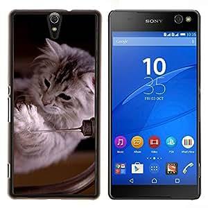 YiPhone /// Prima de resorte delgada de la cubierta del caso de Shell Armor - Ragdoll Maine Coon gatito gato felino - Sony Xperia C5 Ultra