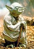empireposter - Star Wars - Yoda - Größe (cm), ca. 70x100 - Poster, NEU - Beschreibung: - Filmposter Kino Movie Science Fiction Sci Fi -