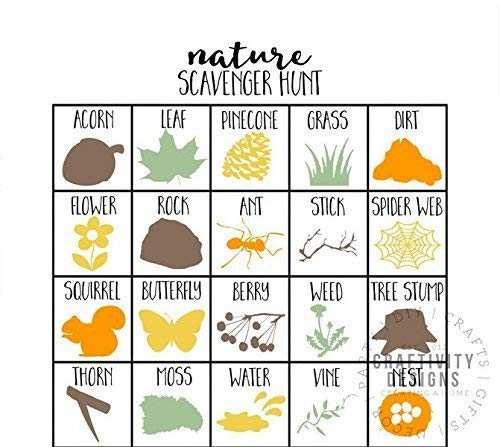 Nature Birthday Party Game Nature Scavenger Hunt Set of 10