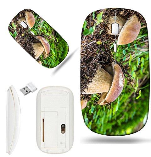 Luxlady Wireless Mouse White Base Travel 2.4G Wireless Mice with USB Receiver, 1000 DPI for notebook, pc, laptop, mac design IMAGE ID 30826839 Edible mushroom Boletus edulis