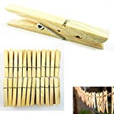 160 Wood Wooden 2 3/4'' Inch Large Spring Clothespins Laundry Clothes Pins Crafts