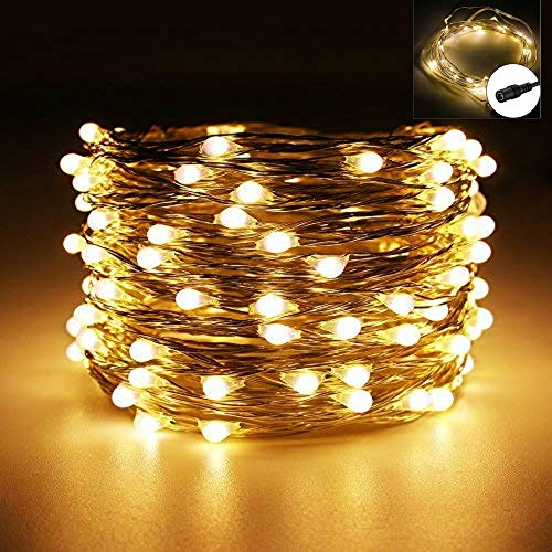 VIPMOON String Light,32.81ft 100LED Fairy String Lights with DC 12V 2A Power Supply,Flexible Silver Wire Warm White Starry String Lights for Indoor/Outdoor Party Wedding Bedroom Patio Christmas ()