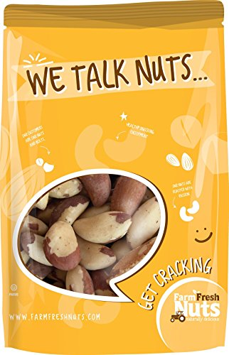 Farm Fresh Nuts BRAZIL NUTS Roasted With Healthy Himalayan Salt (1 LB)