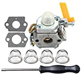 HIPA Carburetor with Adjustment Tool for Ryobi RY09550 RY09605 RY09951 Backpack Leaf Blower Vacuum RY52604 RY52907 TP26 Pole Pruner