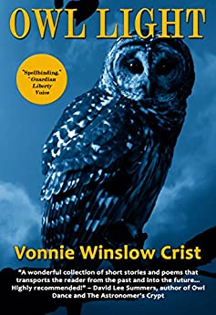 Owl Light by [Crist, Vonnie Winslow]