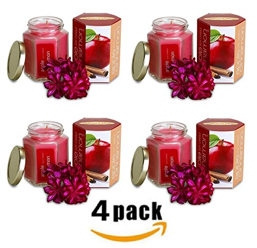 Bulk 4 Pack EXTRA SCENTED Apple Cinnamon Candle In Glass Jar | Long Lasting | Best for Spa, Home, Aromatherapy, Gifts | Indoor & Outdoor Use | Weddings, Party, Meditation | Kitchen & Bath