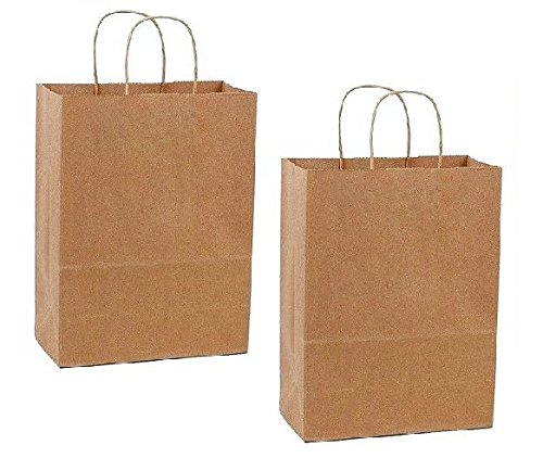 duro-paper-retail-shopping-bags-kraft-with-rope-handles-pack-of-100
